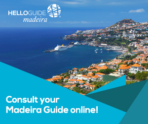 Best guide of madeira - Helloguide Madeira