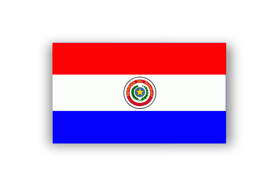 Honorary Consul of Paraguay