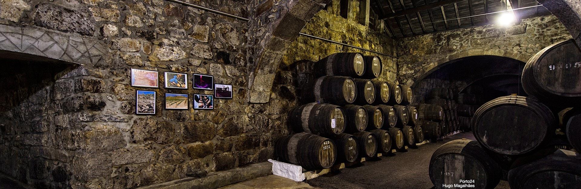 caves-vinhos-helloguide-oporto